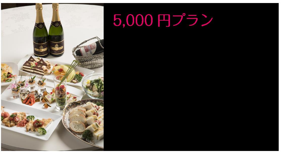 5,000円コース