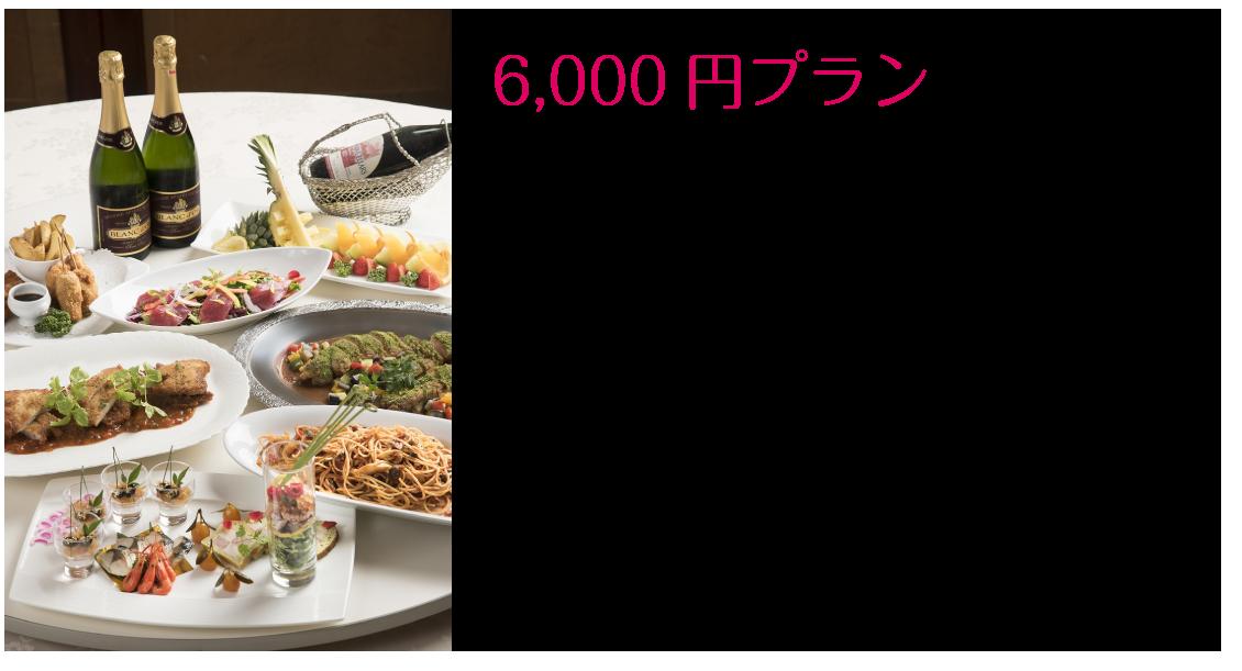 6000円コース